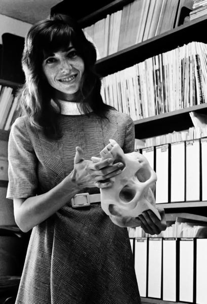 Adrienne Zihlman